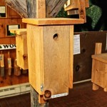 Birdhouse Display