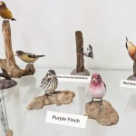 Carved Bird Display - Purple Finch