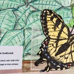 Eastern Tiger Swallowtail Model