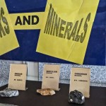 Rocks and Minerals Section