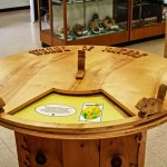 Wheel of Nature