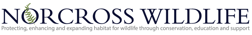 Norcross Wildlife Foundation