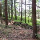 Wall - Upper Trail